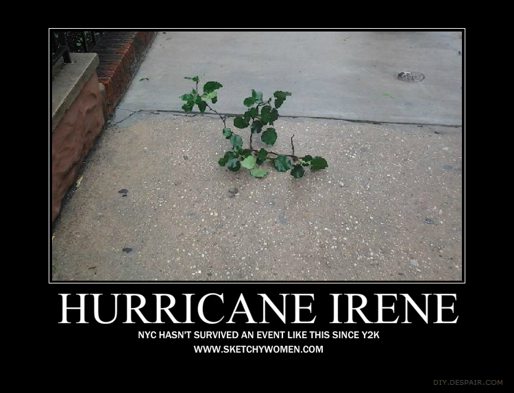 Irene vs. NYC