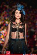 Syeda-Amera-Collection-at-Fashion-Parade-2015-17
