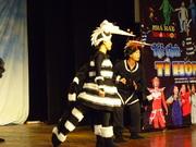 Children's theatre about dengue (Vietnam)