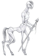 Character Design - Kentaur