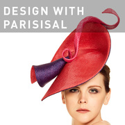 D54 - DESIGN WITH PARISISAL
