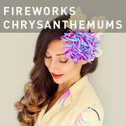 G10 - FIREWORKS CHRYSANTHEMUMS