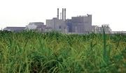 US Sugar Plant