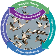 Strategic Habitat Conservation (SHC) product loop