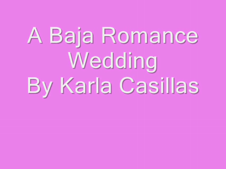 Weddings Los Cabos by Wedding Planner Karla Casillas