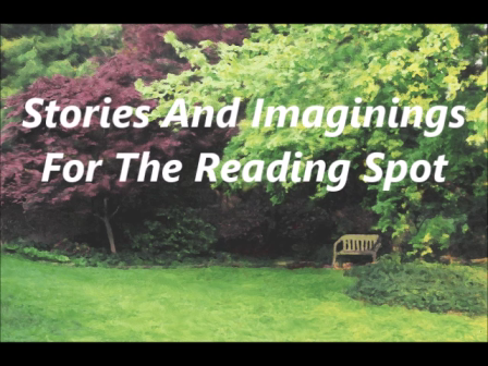 Stories And Imaginings For The Reading Spot by J.D. Holiday A Short Stories Collection For Adults