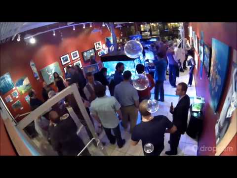 CFLAS Immersed Aquaculture Art Gallery Exhibit - Opening Night Reception Clip