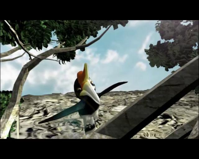 Hornbill animation