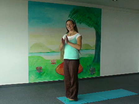 Yoga Vidga Beginning Yoga
