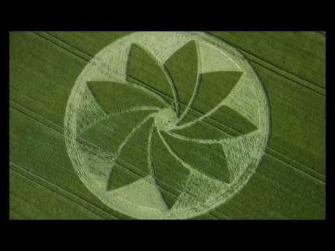 Crop circles 2013: Hoden, Evesham, Worcestershire, UK - 13 July 2013