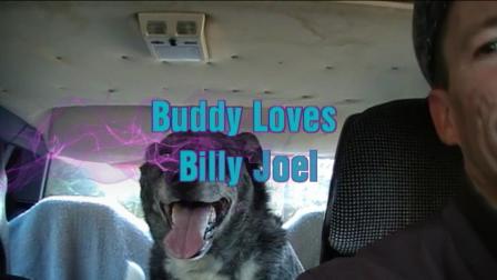 Buddy Loves Billy Joel