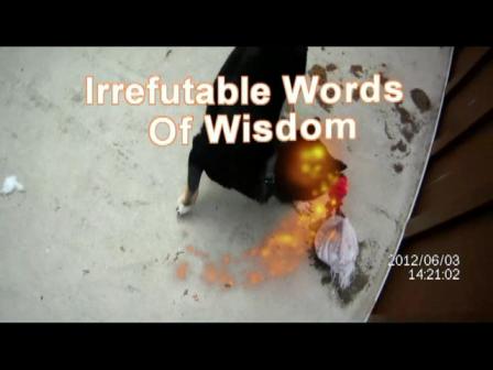 Recirculation of Regurgitation-Irrefutable Words Of Wisdom