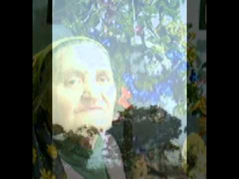 Vasilisia Lazăr Grădinariu - Icoană