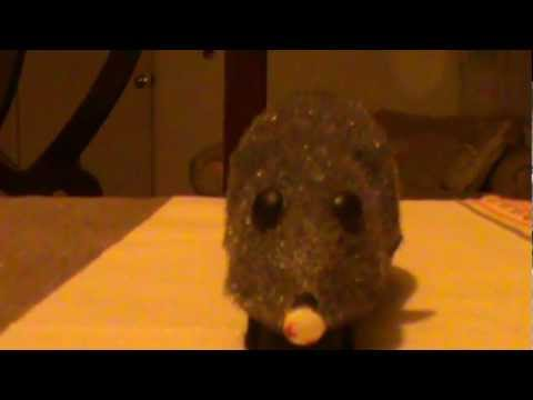 Experiment 002, Following a Mouse - Jorge Omar E. C.
