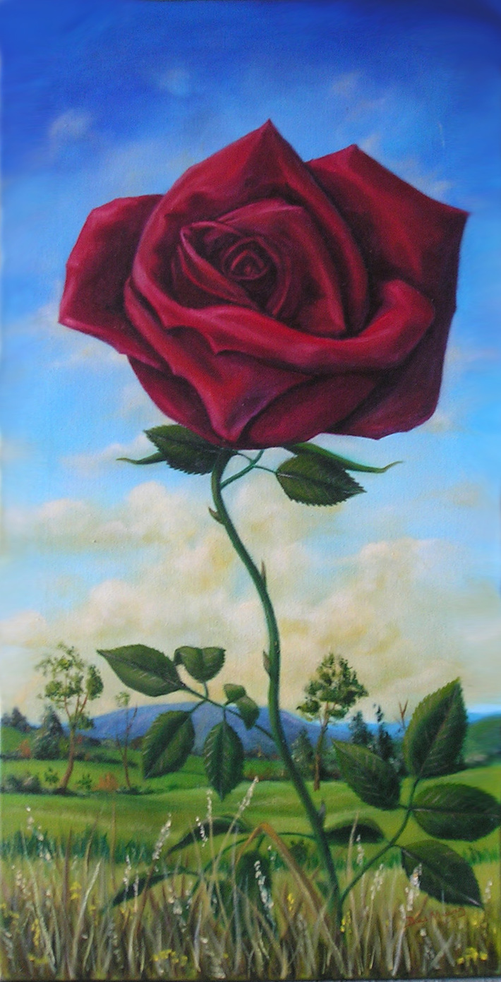 A Rose is a Rose No Matter where it Grows - oils