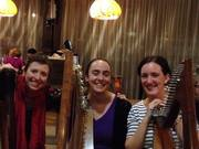 A 3 harp session at Bonn Oir