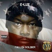 FALLEN SOLDIER ALBUM