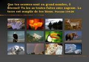 foto_fr_001_sa_104_24