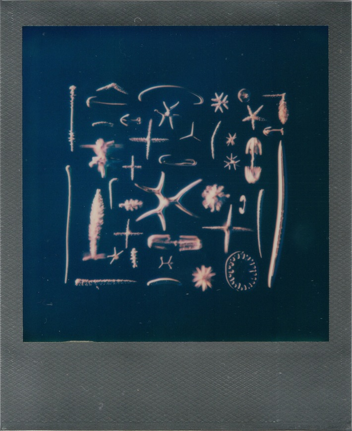 Porifera Spicules, Klaus Kemp arrangement