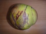 Unusual Fruit/Vege