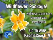 PCT Spring Auction 2016 Auction Items
