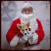 Kallie at Petsmart with Santa