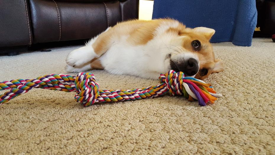 Lazy rope
