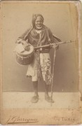 North African gombri