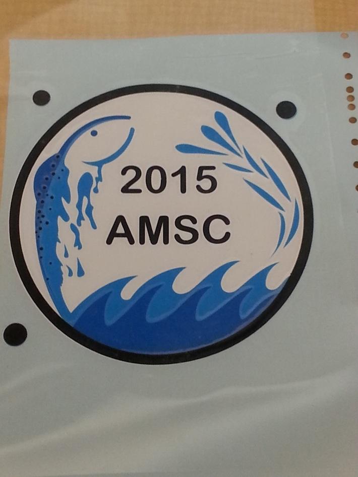 AMSC logo