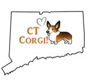 Connecticut Corgis!