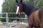 My Riding Blog