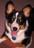 Jacquie & Dakota (Cody)