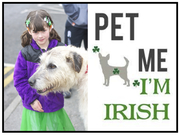 Tadhg Says 'Pet Me, I'm Irish'