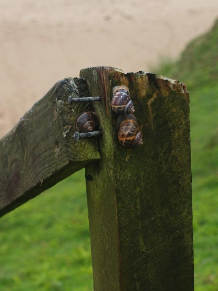 An Trá Bhán - Malin Baeg, Glencolmcille