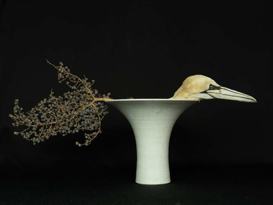 Schweifvogel