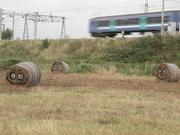 Baled hay, Walthamstow Marsh September 2010