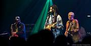 Donald Kinsey W/ Julian Marley & Wailers band tour
