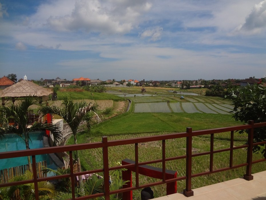 Villa PURI Bali-Passion Kerobokan Umalas vacation rental Villa Bali daily weekly mointhly lease leasehold villabalipassion@yahoo (31)