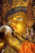 Budismo, A Luz Do Oriente