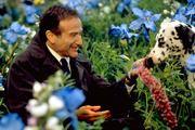 FILMES QUE INSPIRAM POSITIVAMENTE