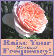 Raise Your Frequency!