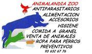 ANIMALANDIA ZOO.tienda de animales y complementos.  SANT FELIU DE LLOBREGAT (BARCELONA)