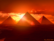 IPEACE  EGYPT
