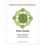 Plant Guilds