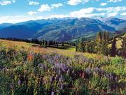 Colorado Rocky Mountain Brides & Vendors