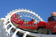 Theme/Amusement Parks