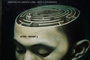 Neuro~Naughtics: Traversing the Labyrinth