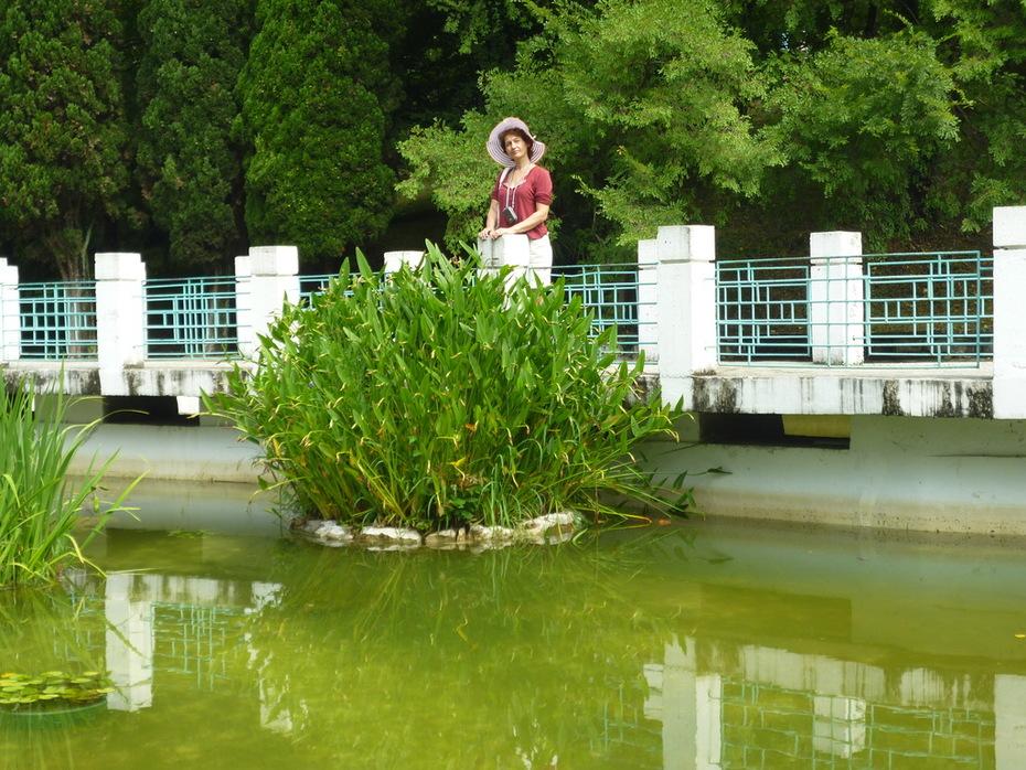 Сочинский Ботанический сад