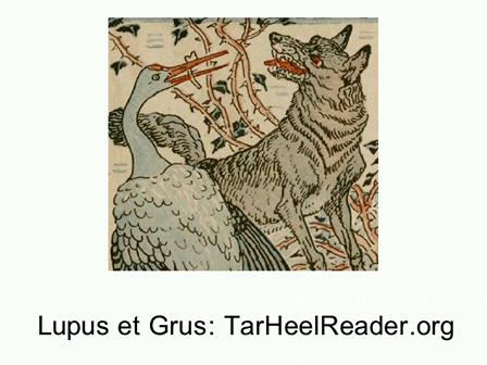 Fabella (6): Lupus et Grus