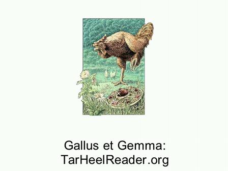 Fabella (5): Gallus et Gemma